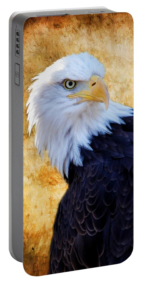 Eagle Portable Battery Charger featuring the photograph An Eagles Standpoint by Athena Mckinzie