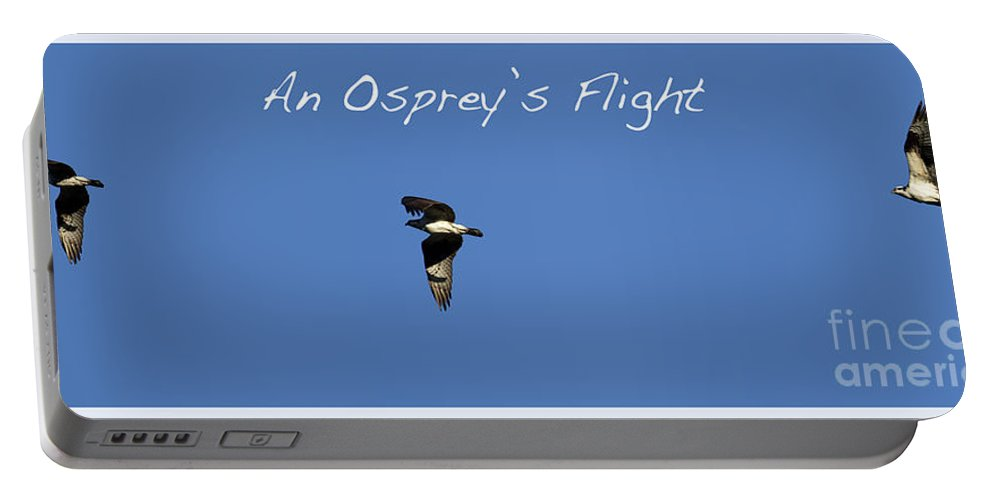 Osprey Portable Battery Charger featuring the photograph An Ospreys Flight by Belinda Greb
