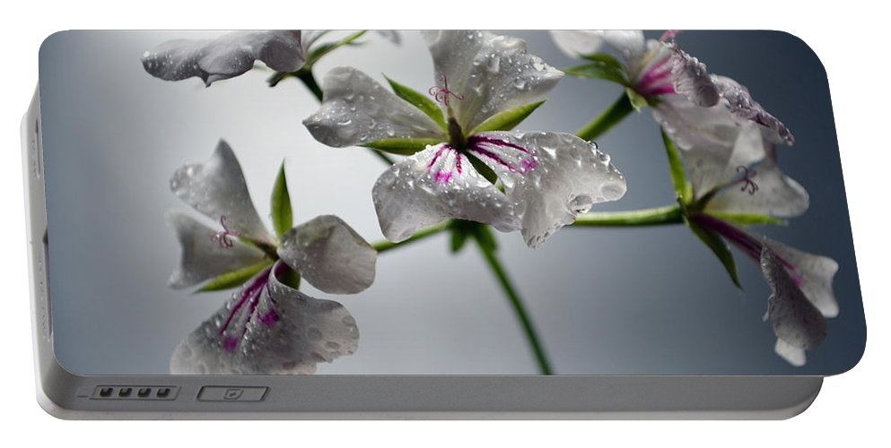 Flower Portable Battery Charger featuring the photograph An Other Story... by Sebastiano Secondi