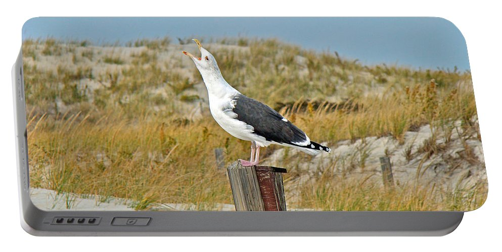 Gull Portable Battery Charger featuring the photograph And You're Really Gonna Want To Sing by Mother Nature