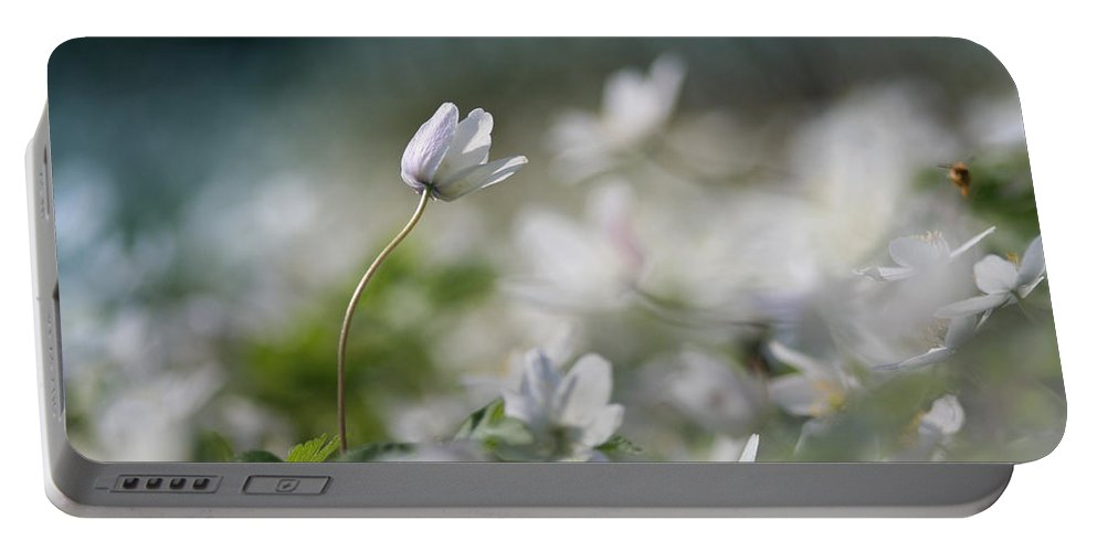 Photo Portable Battery Charger featuring the photograph Anemone Flower by Dreamland Media