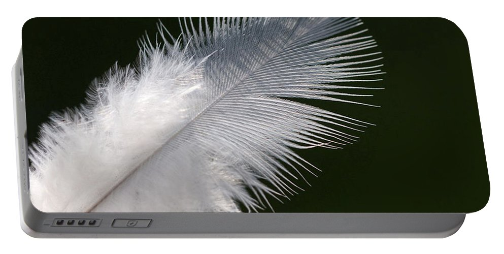 Angel Portable Battery Charger featuring the photograph Angel Feather by Carol Lynch
