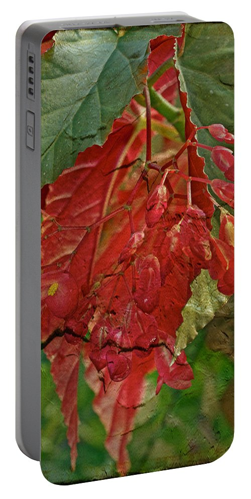 Floral Portable Battery Charger featuring the photograph Angel On The Wing by Mother Nature