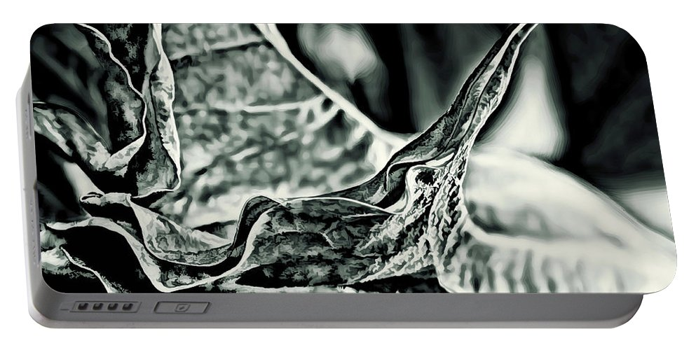 Angel Wing Portable Battery Charger featuring the photograph Angel Wing Variation Black White by Gary Holmes