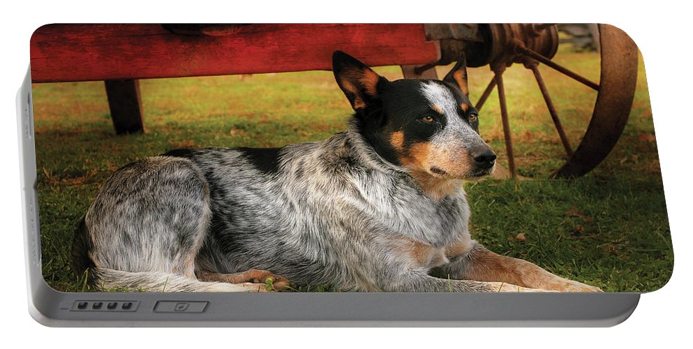 Savad Portable Battery Charger featuring the photograph Animal - Dog - Always Faithful by Mike Savad