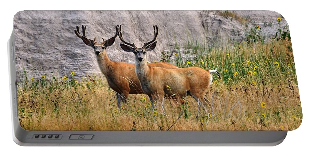 Buck Portable Battery Charger featuring the photograph Antler To Antler by Deanna Cagle