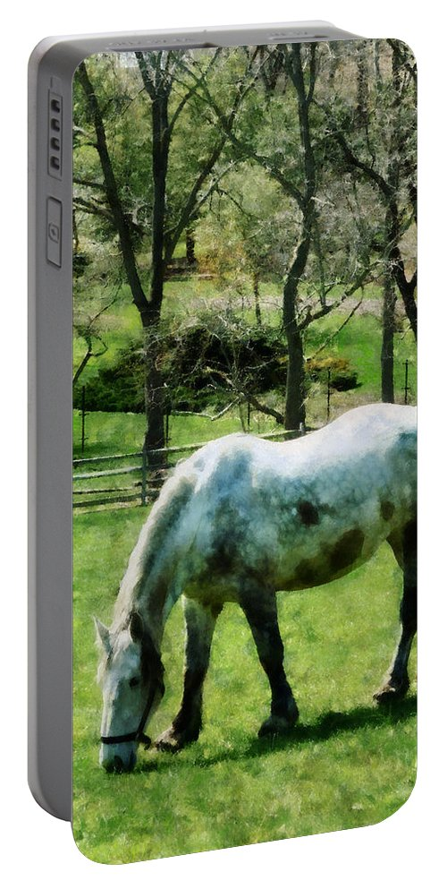Horse Portable Battery Charger featuring the photograph Appaloosa In Pasture by Susan Savad