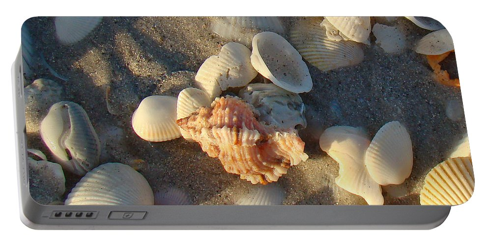 Shells Portable Battery Charger featuring the photograph Apple Murex by Nancy L Marshall