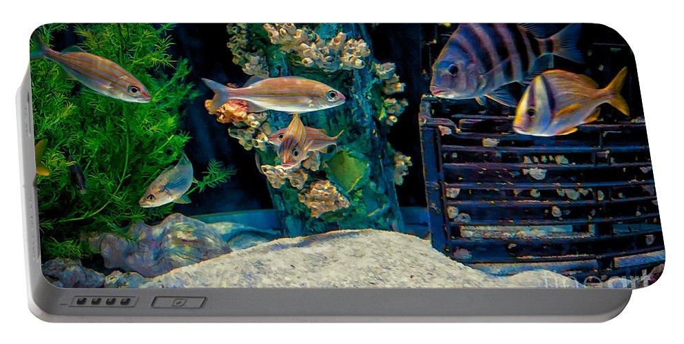 Aquarium Portable Battery Charger featuring the photograph Aquarium Art by Kathleen K Parker