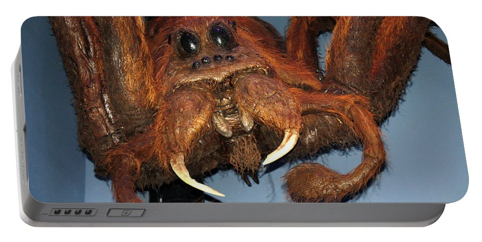 Harry Potter Portable Battery Charger featuring the photograph Aragog by David Nicholls