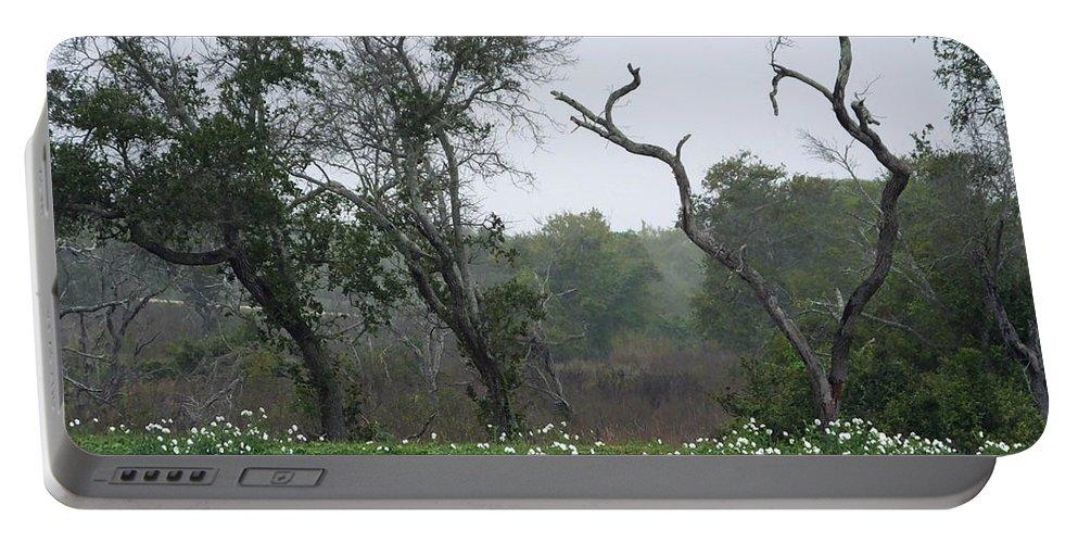 Texas Portable Battery Charger featuring the photograph Aransas Nwr Landscape by Lizi Beard-Ward