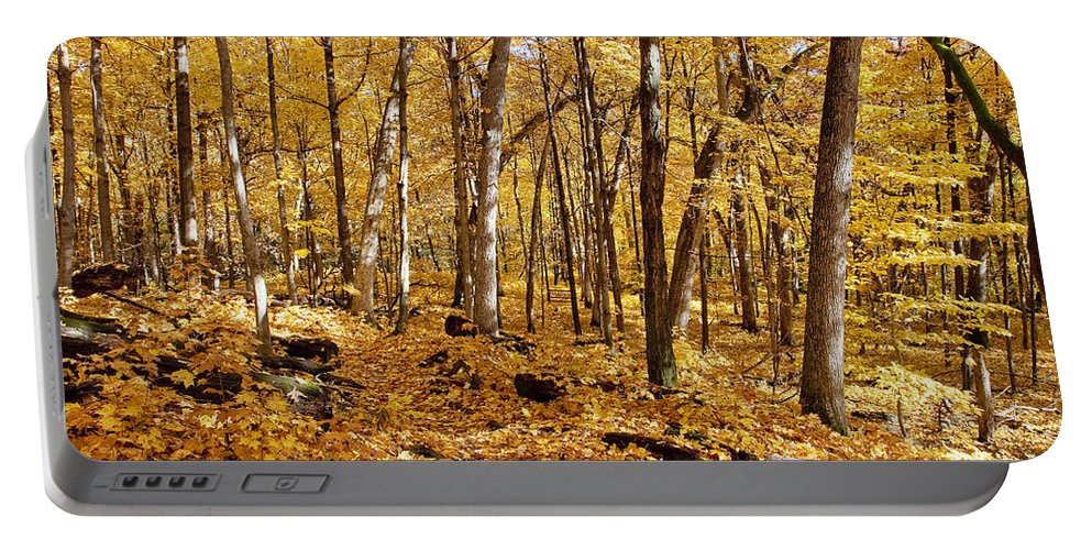 Aboretum Portable Battery Charger featuring the photograph Arboretum Trail by Steven Ralser