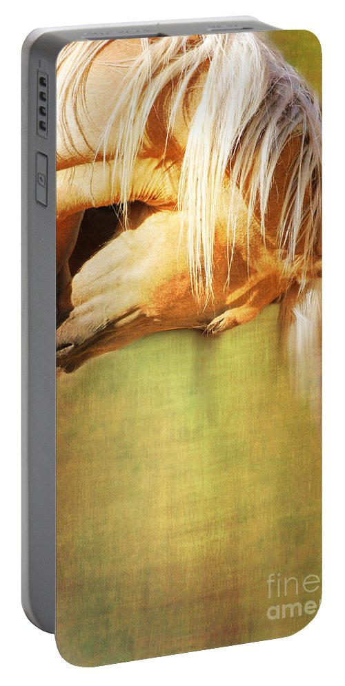 Horse Portable Battery Charger featuring the photograph Golden by Annette Coady