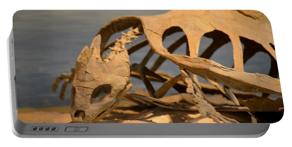 Archelon Relic Portable Battery Charger featuring the photograph Archelon Relic by Maria Urso