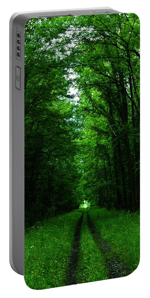 Leroy Portable Battery Charger featuring the photograph Archway Of Light by Rhonda Barrett