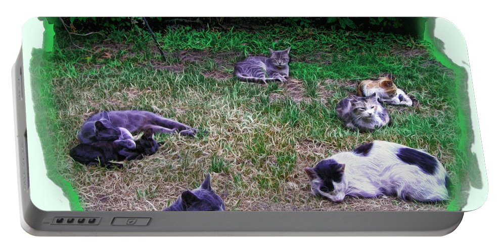Buenos Aires Portable Battery Charger featuring the photograph Argentina Cat Park by Joan Minchak