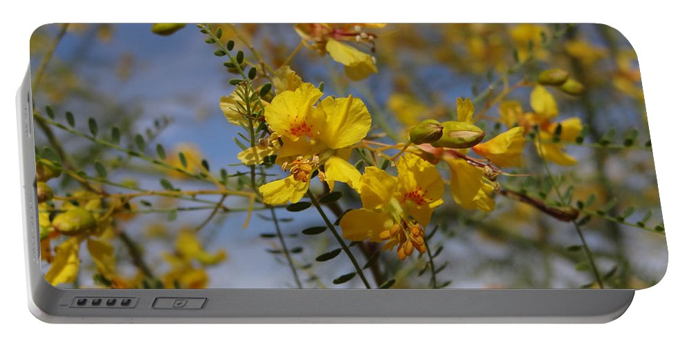 Tree Portable Battery Charger featuring the photograph Arizona Gold by Jamie Ramirez
