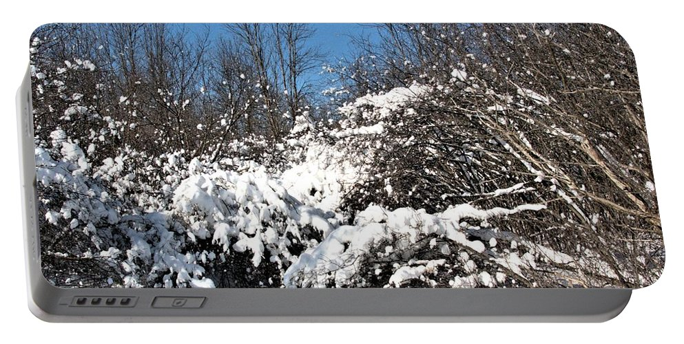 Landscape Portable Battery Charger featuring the photograph Asleep Under The Snow by Valerie Kirkwood