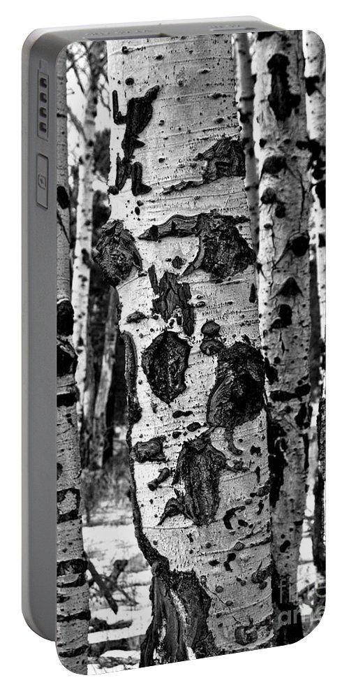 Aspen Art Portable Battery Charger featuring the photograph Aspen Art by Mae Wertz