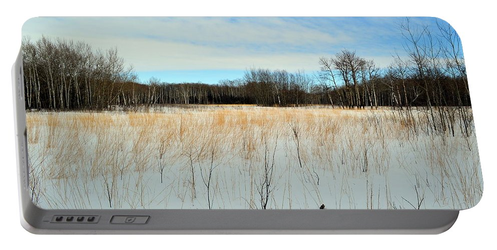 Natural History Area Portable Battery Charger featuring the photograph Aspen Prairie 2 by Mark Hudon