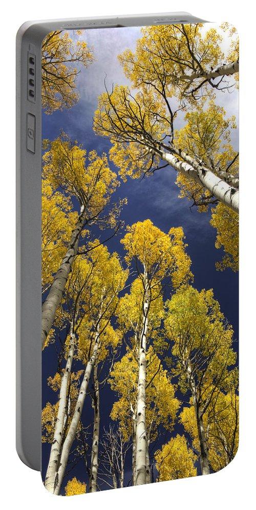 Fall Foliage Portable Battery Charger featuring the photograph Aspen Tops by Saija Lehtonen