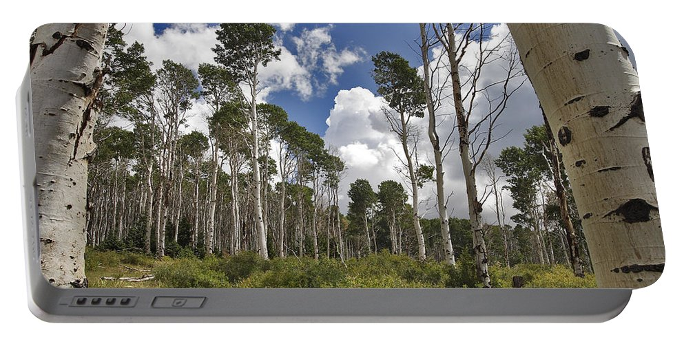 3scape Portable Battery Charger featuring the photograph Aspen Grove by Adam Romanowicz