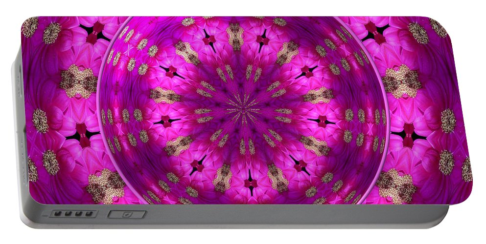 Aster Portable Battery Charger featuring the photograph Aster Kaleidoscope Under Glass by Rose Santuci-Sofranko