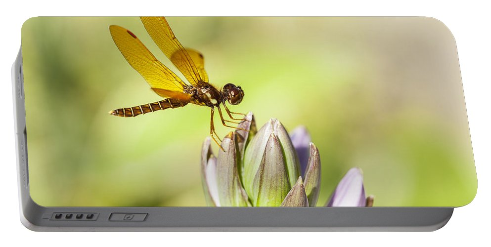 Flowers Portable Battery Charger featuring the photograph Atop The Hostas by Karol Livote