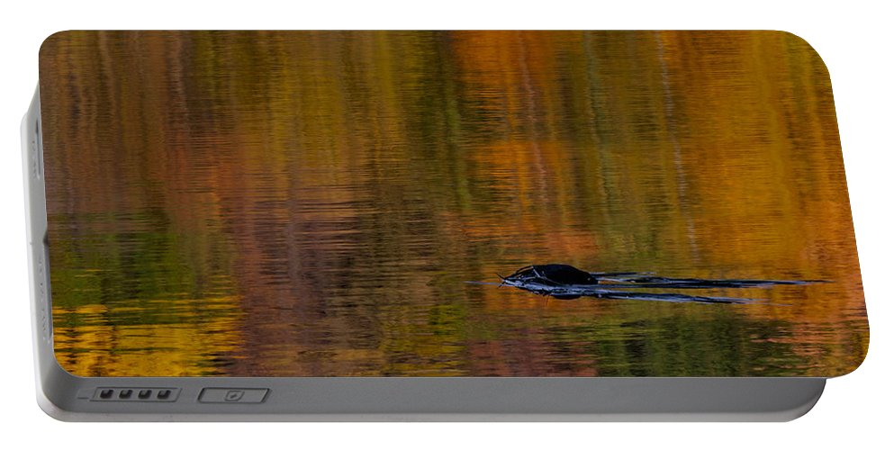 Autumn Portable Battery Charger featuring the photograph Atumn Reflections by Susan Candelario