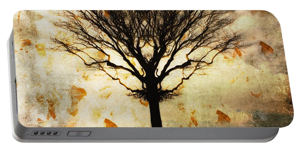 Nag004060 Portable Battery Charger featuring the photograph Autum Wind by Edmund Nagele