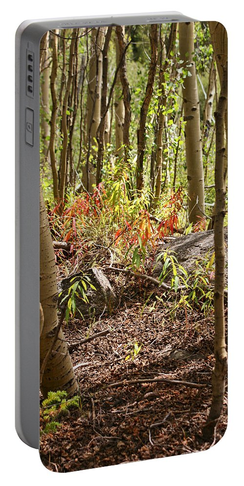 Landscapes Portable Battery Charger featuring the photograph Autumn Begins by Jeremy Rhoades