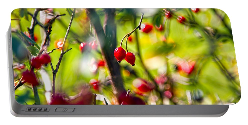 Berries Portable Battery Charger featuring the photograph Autumn Berries by Stelios Kleanthous