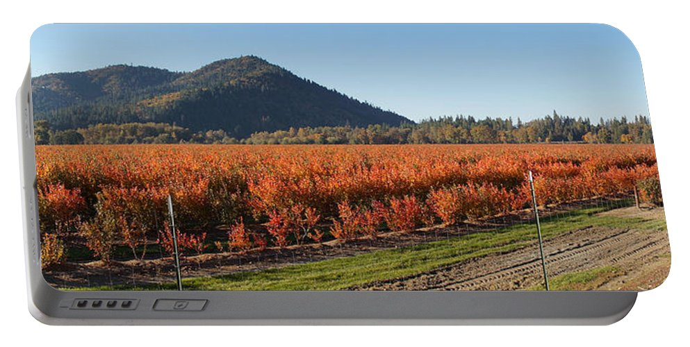 Panorama Portable Battery Charger featuring the photograph Autumn Blueberry Panorama by Mick Anderson