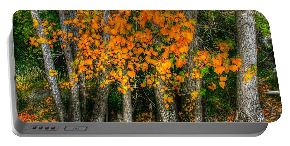 Colourful Portable Battery Charger featuring the photograph Autumn Breakout No.2 by Jenny Setchell