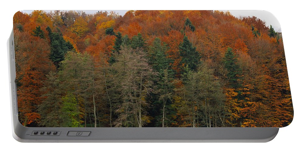 Autumn Portable Battery Charger featuring the photograph Autumn Colors by Ivan Slosar