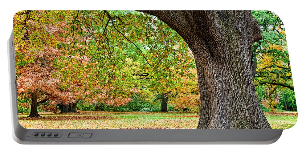 Autumn Portable Battery Charger featuring the photograph Autumn by Dave Bowman