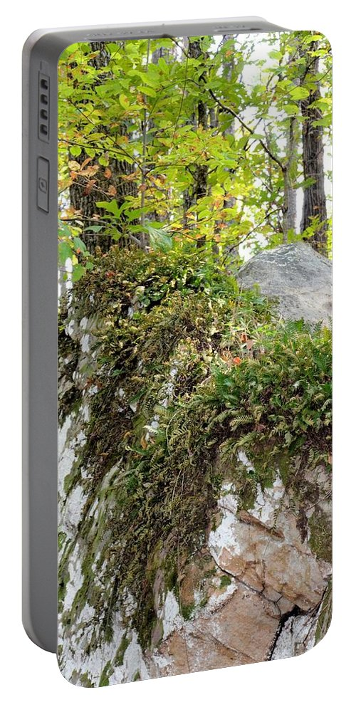 Autumn In Boulder Field Portable Battery Charger featuring the photograph Autumn In Boulder Field by Maria Urso