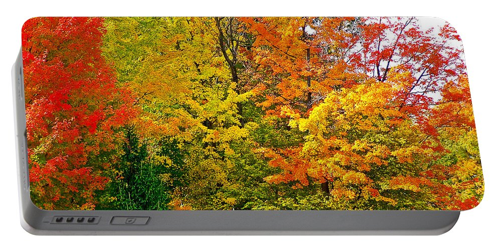 Autumn In Southwest Michigan Portable Battery Charger featuring the photograph Autumn In Southwest Michigan by Ruth Hager