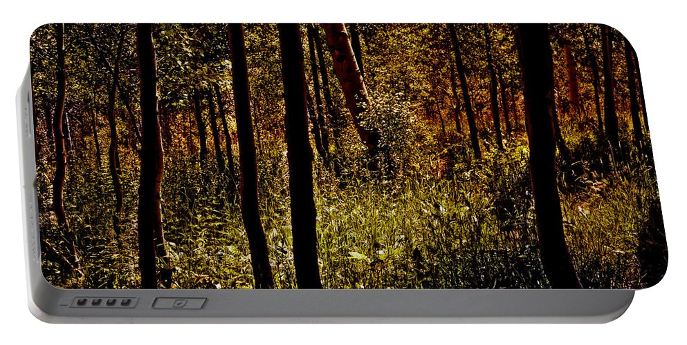 Trees Portable Battery Charger featuring the photograph Autumn In Vail - Colorado by Madeline Ellis