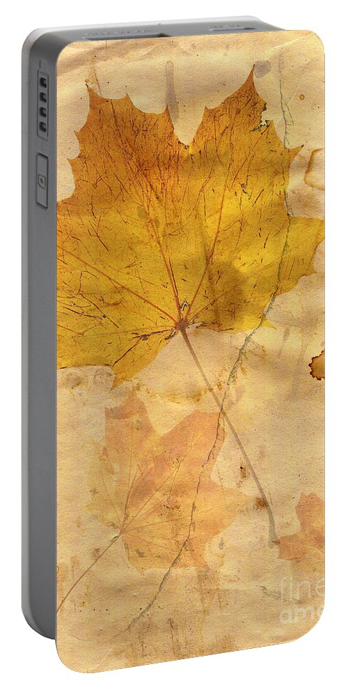 Detail Portable Battery Charger featuring the digital art Autumn Leaf In Grunge Style by Michal Boubin