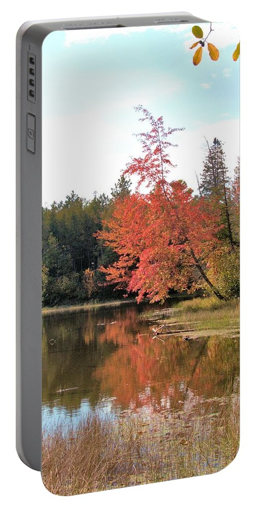 Autumn Portable Battery Charger featuring the photograph Autumn Leaning Tree by Valerie Kirkwood
