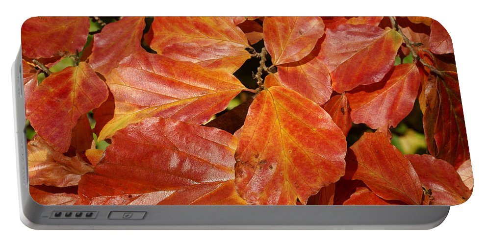 Autumn Portable Battery Charger featuring the photograph Autumn Leaves 80 by Ron Harpham
