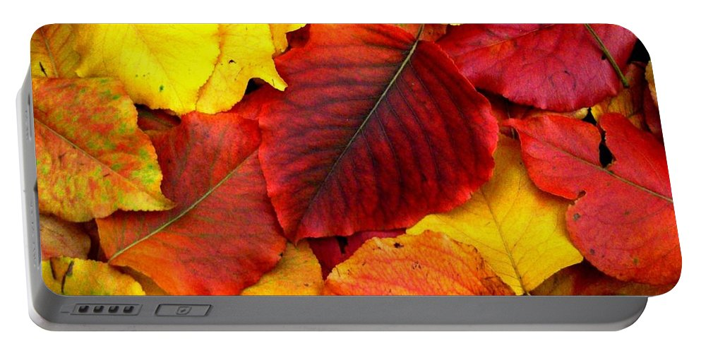 Colors Portable Battery Charger featuring the photograph Autumn Leaves by Sharon Woerner