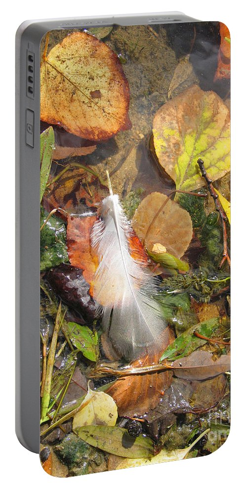 Autumn Portable Battery Charger featuring the photograph Autumn Leavings by Ann Horn