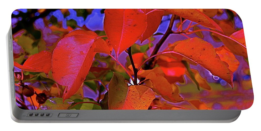 Autumn Portable Battery Charger featuring the photograph Autumn Magic 1 by First Star Art