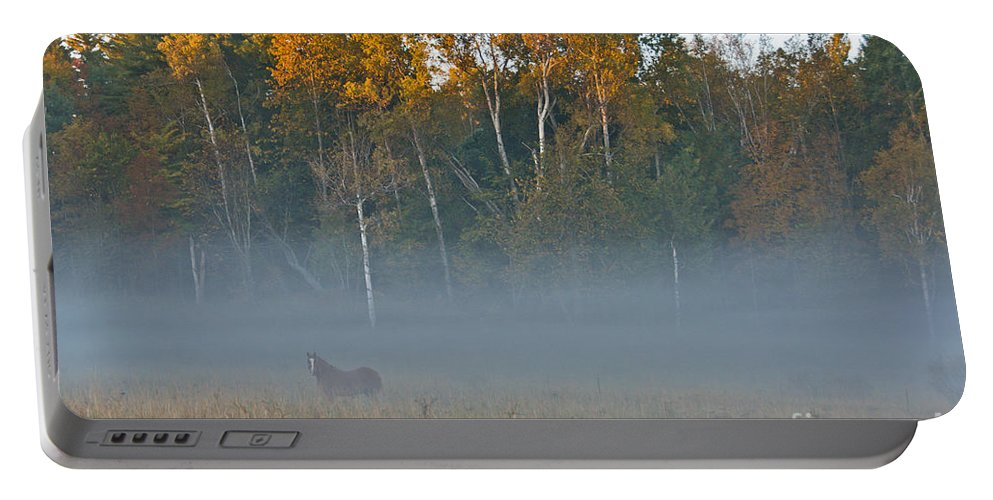 Portable Battery Charger featuring the photograph Autumn Mist by Cheryl Baxter