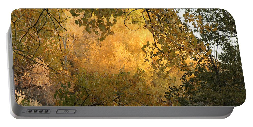 Nature Portable Battery Charger featuring the photograph Autumn On The Bosque by Noa Mohlabane