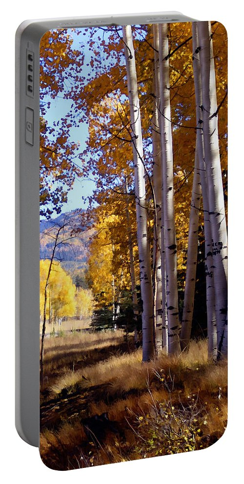 Trees Portable Battery Charger featuring the photograph Autumn Paint Chama New Mexico by Kurt Van Wagner