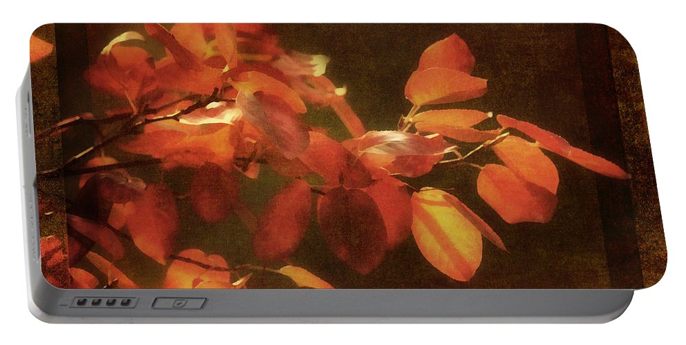 Autumn Portable Battery Charger featuring the photograph Autumn Promise by Georgiana Romanovna