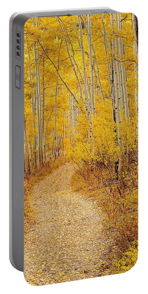 Autumn Portable Battery Charger featuring the photograph Autumn Road by Leland D Howard
